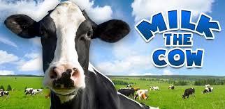 Dairy King-Kenya